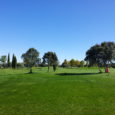 At about 20 min from the Finka you have El Reino Golf. A nice 9 holes with one of the best practice areas of Europe. You will have special price coming from La Finka and there are posibilities of golf classes or handicap courses. One […]