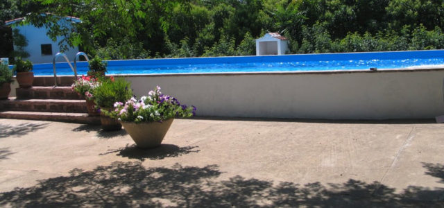 La Finka Enjambraderos is located in the wonderful valley of Los Quiles surrounded by the rolling hills of the Montes Norte de Toledo. In the midst of 8000 olive and 4000 almond tres. Our guests are offered 2 apartments and 1 spacious double room with […]